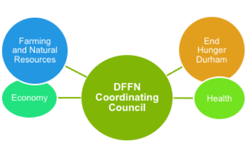 Organizational structure of the Durham Farm and Food Network with a Coordinating Council and four Action Circles.