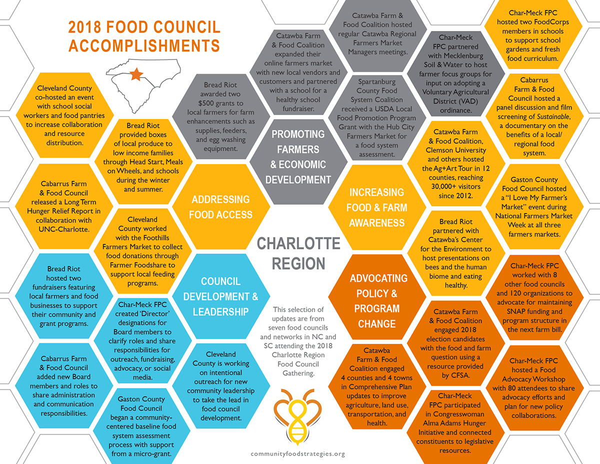 This document lists several accomplishments from the seven food councils and networks in North Carolina and South Carolina that attended this regional gathering.