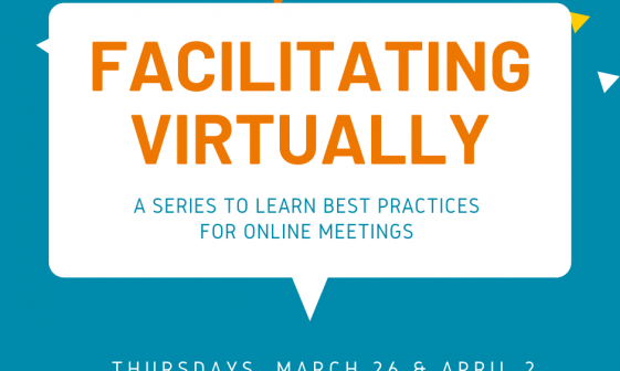 Facilitating Virtually